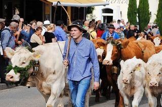 """Alemannische Woche in Oberried: """"Das ganze Dorf hilft uns mit"""""""