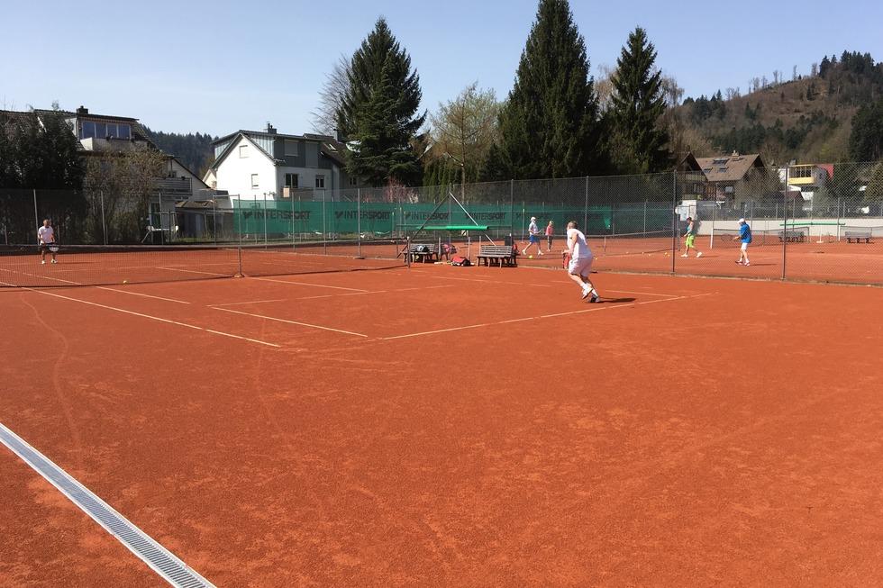 Tennisanlage TC Kollnau-Gutach - Waldkirch