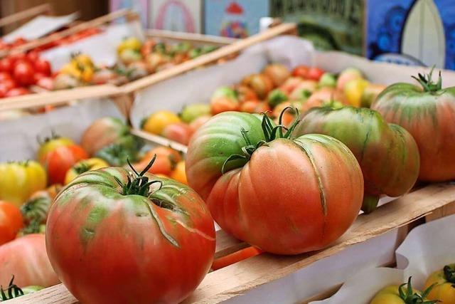 Auf Billy's Farm gibt's ungewöhnliche Gemüsesorten