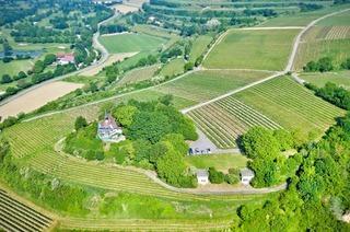 Kapellenberg (Munzingen)