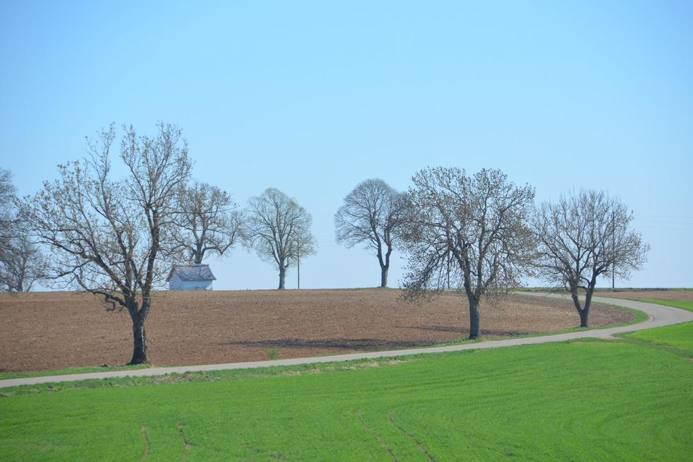 Ortsteil Lembach - Wutach