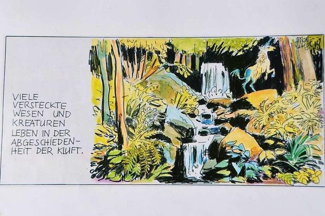 Rheinfelder Künstler hält lokale Geschichte in Comics und Bildern fest