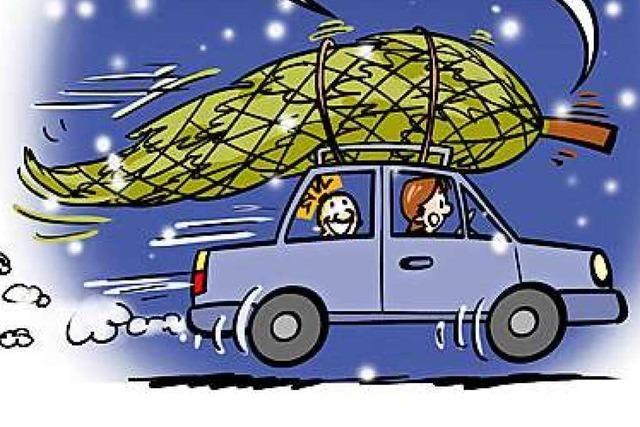 Lucy Backfisch: Der Weihnachtsbaum