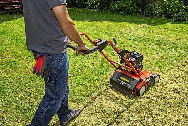 Rasen vertikutieren und düngen