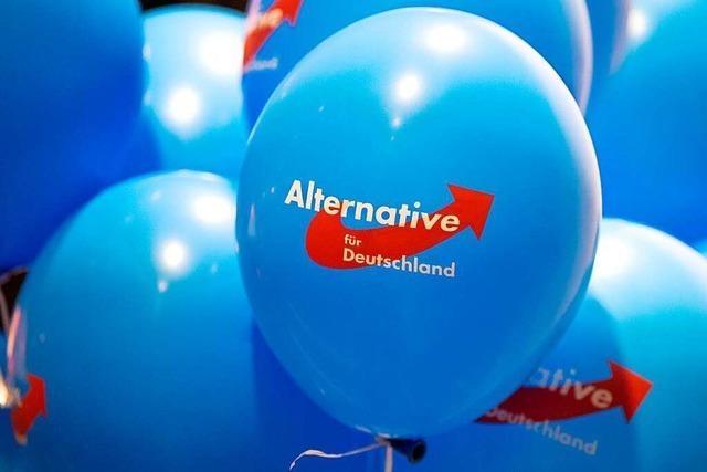 AfD sagt Kundgebung in Freiburg wegen Coronavirus ab