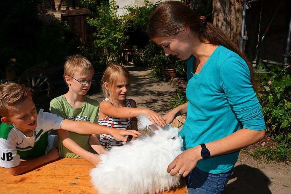Auf dem Natur- und Erlebnishof in Opfingen können Kinder seltene Nutztierrassen kennenlernen - Badische Zeitung TICKET