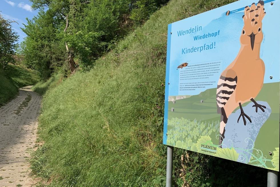 Wendelin-Wiedehopf-Themenpfad - Ihringen