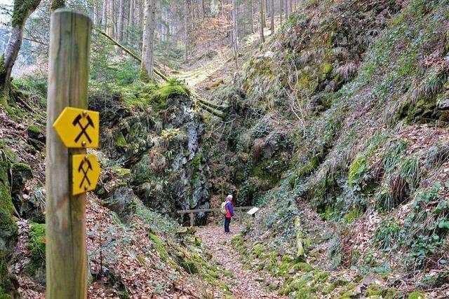 Unterwegs auf dem Bergbau-Lehrpfad Birchiburg bei Bollschweil