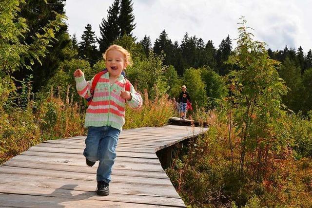 Acht Erlebnispfade für Kinder rund um den Schwarzwald
