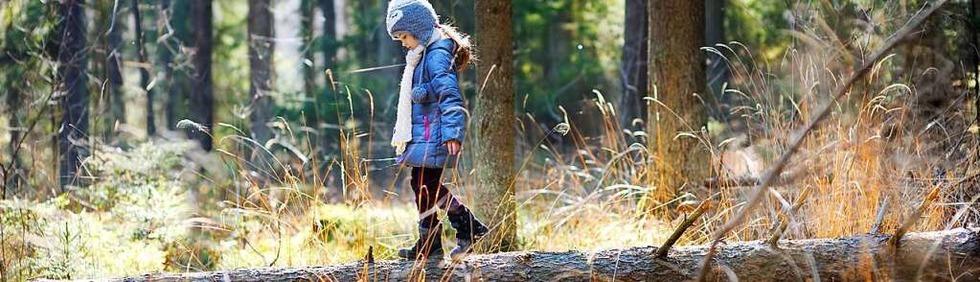 Erlebnispfade für Kinder im Schwarzwald