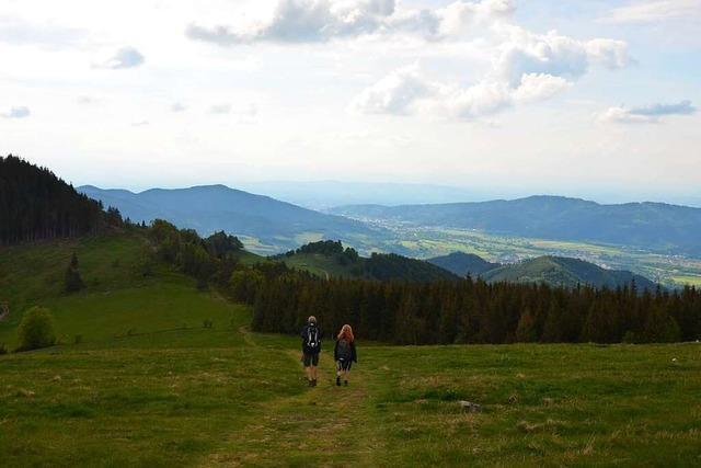 Auf steilen Pfaden vom Zastler zum Hinterwaldkopf