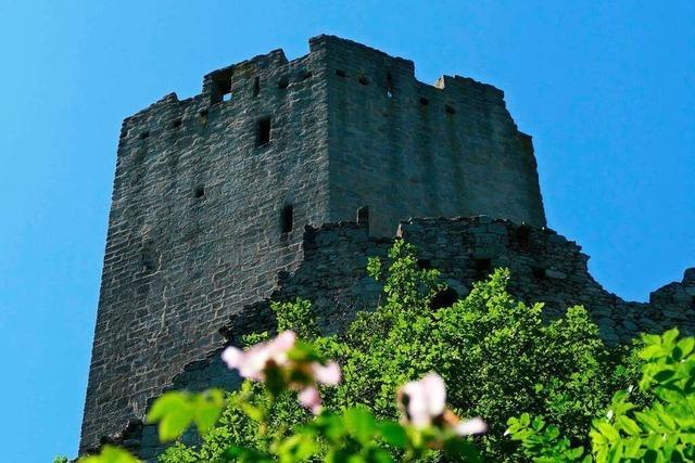 Rauf zum Raubritternest auf die Burg Ortenbourg