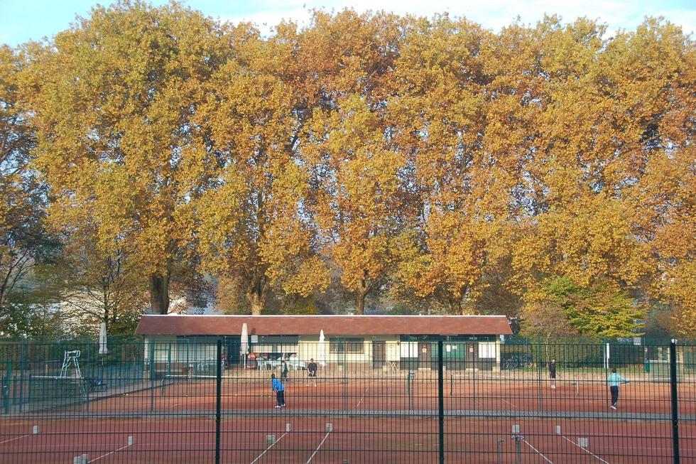 Tennisanlage TC Grün-Weiß - Emmendingen
