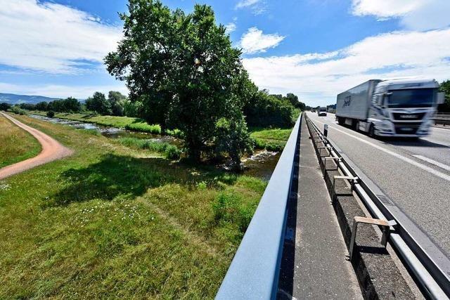 Geplante Baustraße für die Rheintalbahn im Rieselfeld sorgt für Kritik