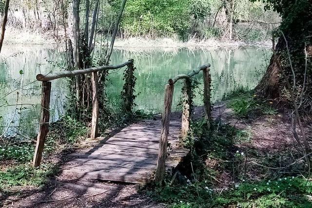 Wanderung: Bei Wittenweier kann man wandernd den