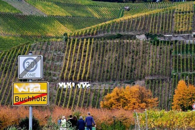 Auf dem Breisgauer Weinweg von Buchholz nach Malterdingen
