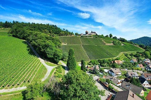 Auf dem Ortenauer Weinpfad von Baden-Baden nach Gernsbach