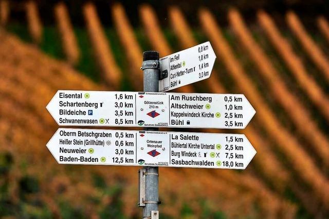 Auf dem Ortenauer Weinpfad von Bühlertal nach Baden-Baden