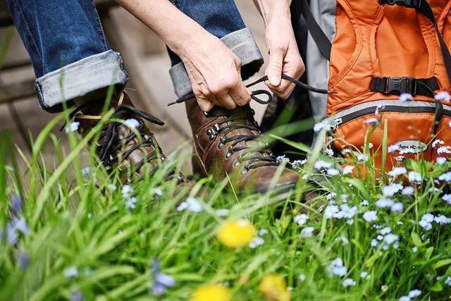 Wandern auf der Hütten- und Seentour im Dollertal in den Südvogesen