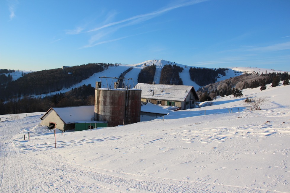 Ferme Auberge du Steinlebach (Markstein) - La Bresse
