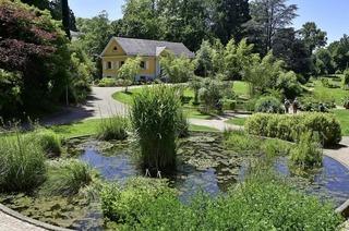 Der Botanische Garten Freiburg führt auch in tropische Gefilde