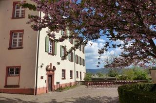 Klostermuseum (Schuttern)