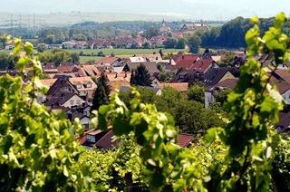Höfe in Freiburg-Opfingen öffnen Türen für Interessierte