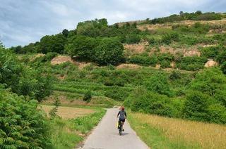 Gut im Tritt mit Bergblick – unterwegs auf dem Badischen Weinradweg (Teil 2)