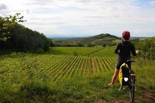 Mit dem Velo auf dem Badischen Weinradweg