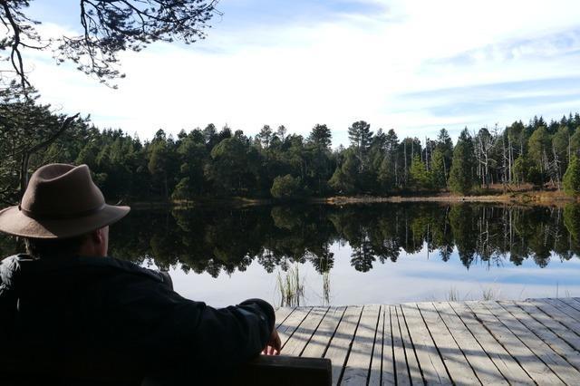 Eine Wanderung durch das sagenumwobene Schwarzwälder Hochmoor zum Blindensee