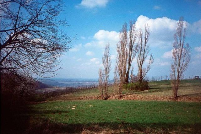 Von Riegel nach Bischoffingen auf den Spuren von Mithras und Buddha
