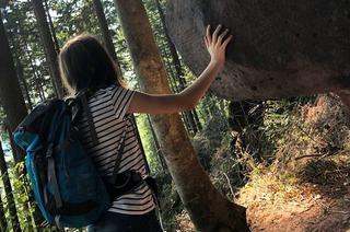Der Felsenpfad bei Herbolzheim ist ein steiles Stück Abenteuer