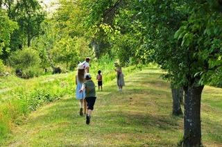 Früchte, Frösche und Familienfrieden: Tour auf dem Naturerlebnispfad Ettenheim