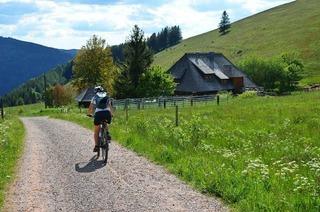 Rad-Rundtour von Freiburg aus zum Hinterwaldkopf und Rinken
