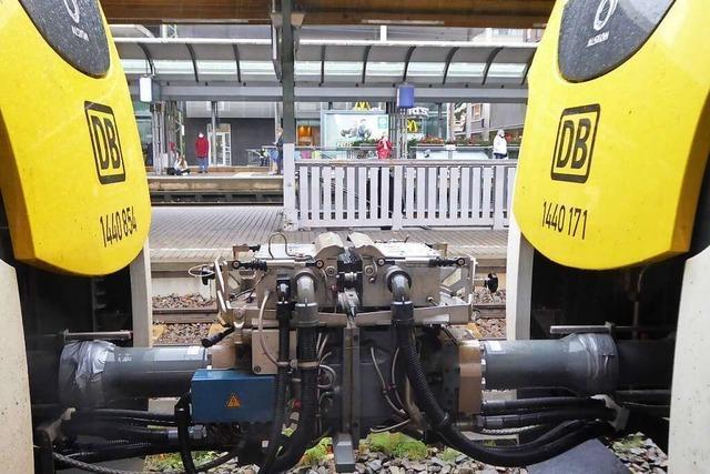 Experte erklärt die Ursachen für die Probleme auf der Breisgau-S-Bahn