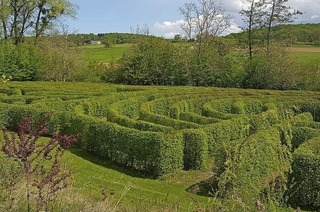 Ganz schön tricky dieses Labyrinth