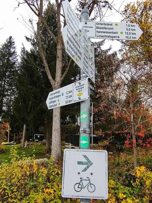 Ein Spaziergang am ruhigen Kirnbergsee - Badische Zeitung TICKET