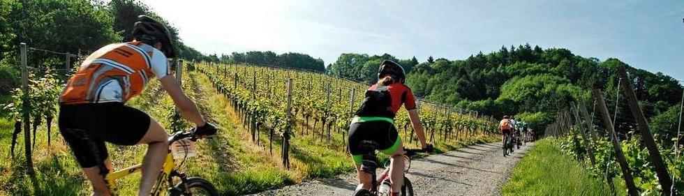 Radtouren in Südbaden