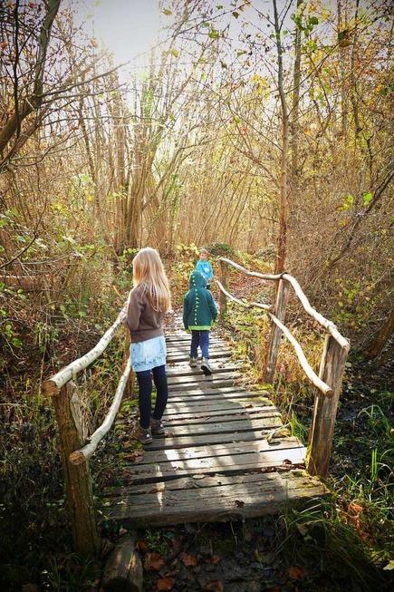 Eine Familientour am Rhein auf dem Elzpfad - Badische Zeitung TICKET
