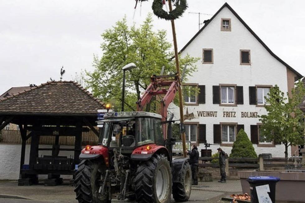 Weingut Bolanz - Auggen