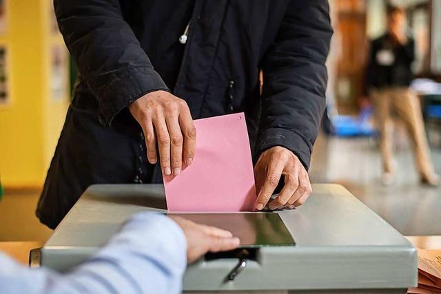 Landtagswahl am 14. März: Auf Stimmenfang im Lockdown