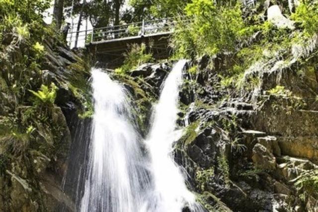 Genießerpfad Wasserfallsteig