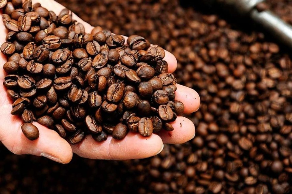 Kaffee Fredo - Neuenburg am Rhein