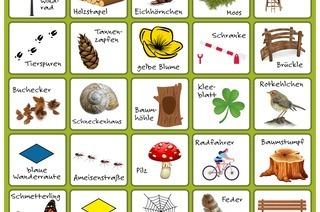 Wer findet Moos, Bank, Raute oder Pilz? Unser Wald- und Wander-Bingo für Kinder