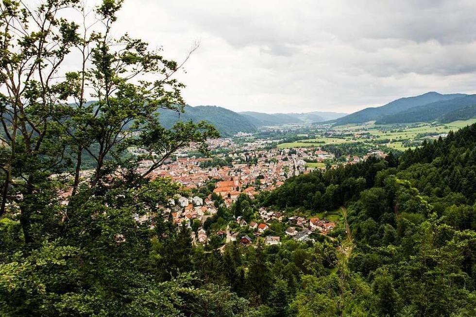 Auf luftigen Pfaden auf dem Baumkronenweg in Waldkirch - Badische Zeitung TICKET