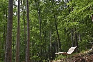 Waldbadepfad